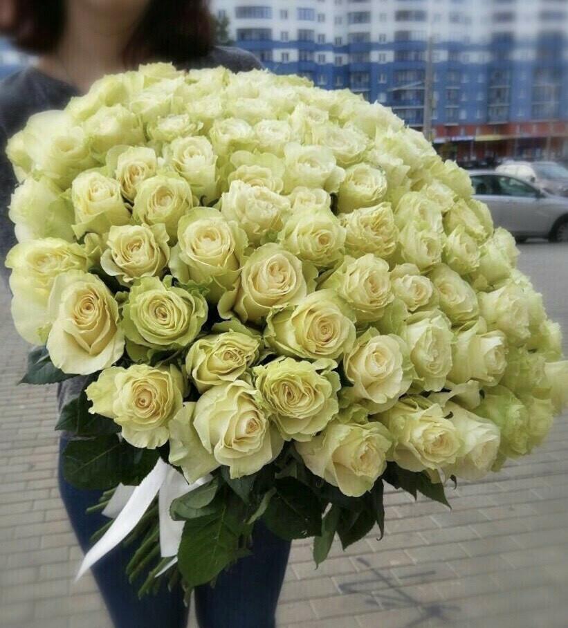 51 роза (Эквадор) Мондиаль 60 см