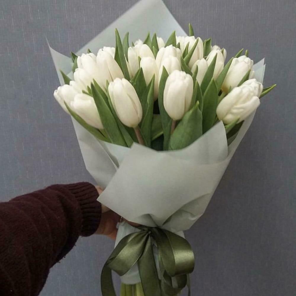 19 белых тюльпанов в стильной упаковке