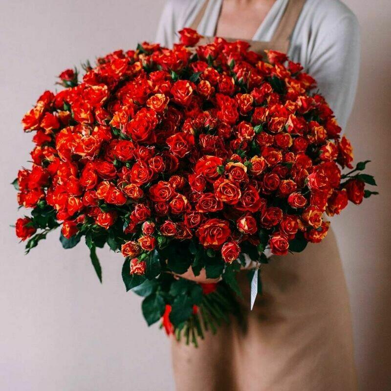 51 рыжая кустовая роза