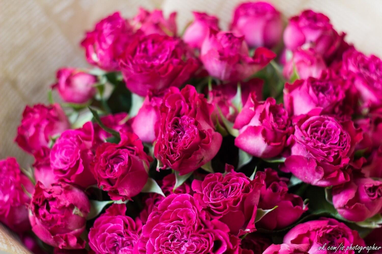 """Букет кустовых пионовидных роз  в крафте """"Тания Бореалис"""""""