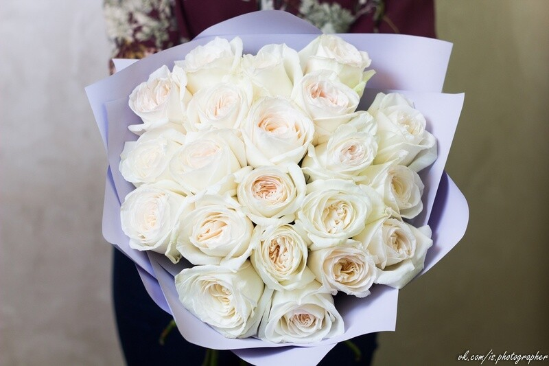 Букет пионовидных роз White O'Hara 23 шт