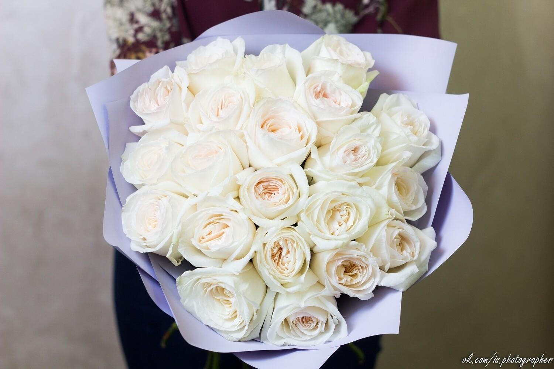 Роза White O'hara 60см пионовидная