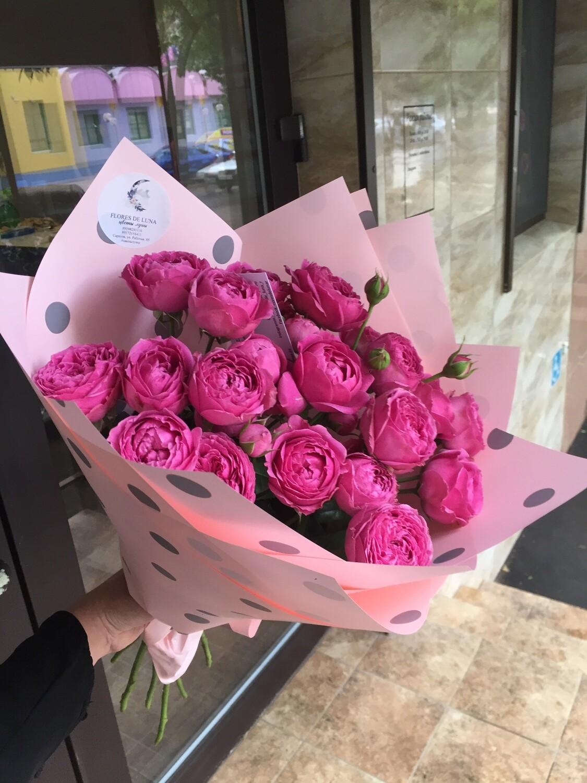 """9 пионовидных кустовых роз """"Мисти баблз"""""""