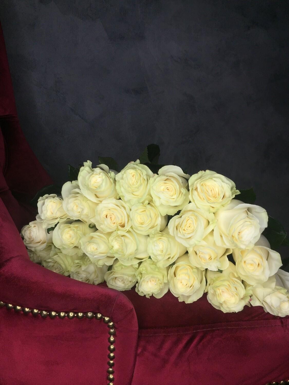 Роза Мондиаль в наличии