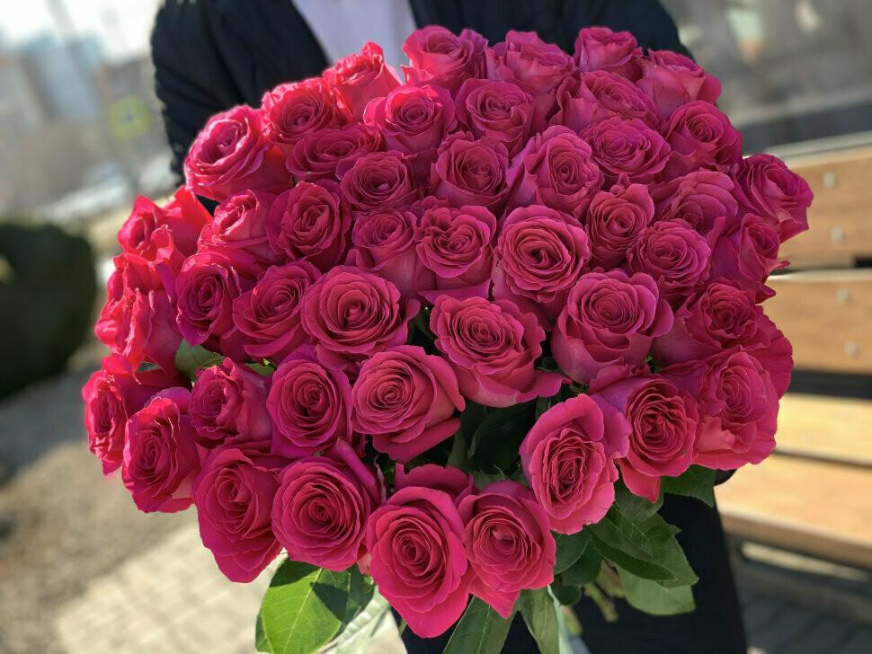 25 малиновых роз Эквадор 60 см