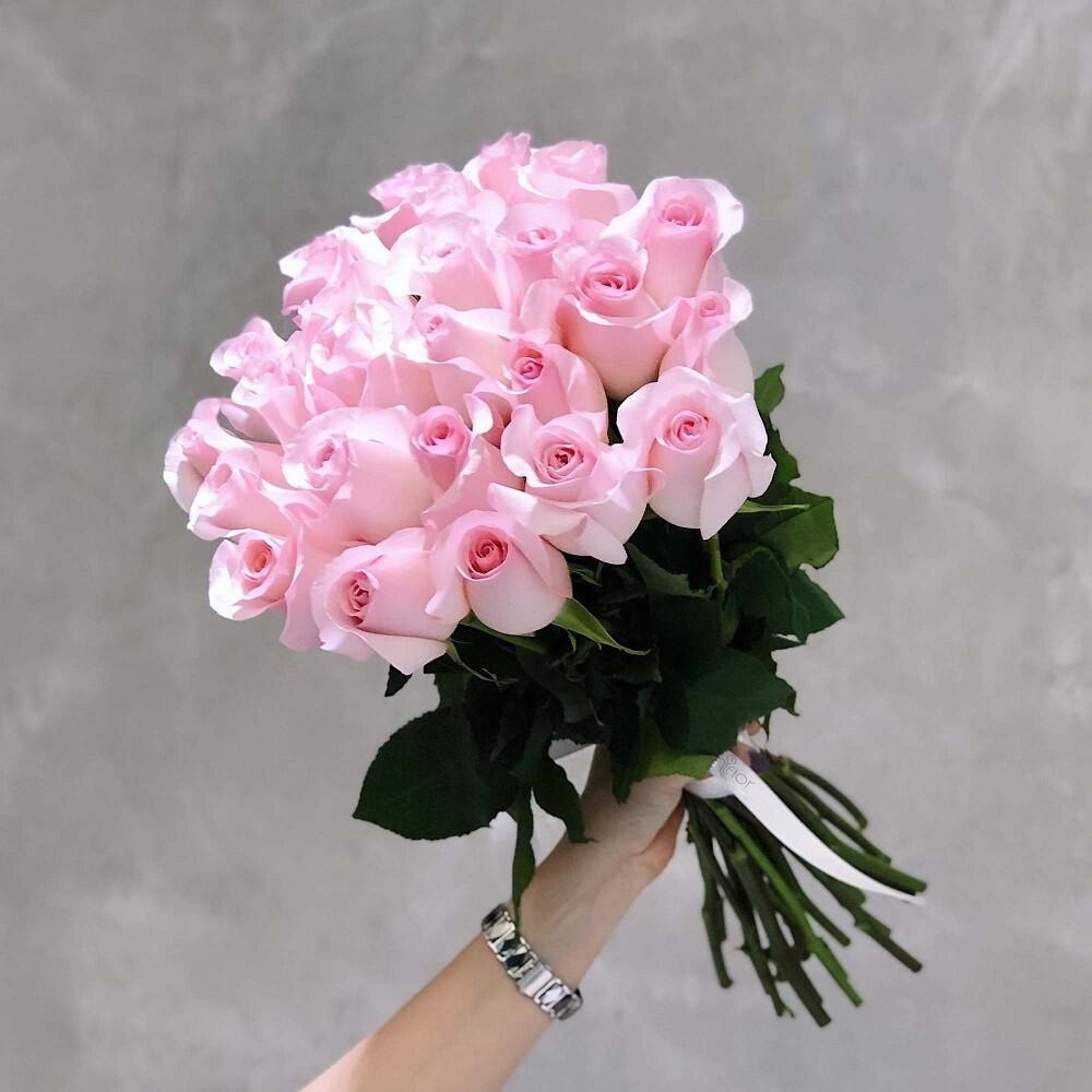 19 нежных роз Эквадор 60 см