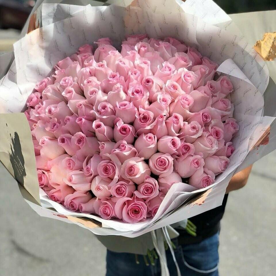 101 нежная роза Эквадор