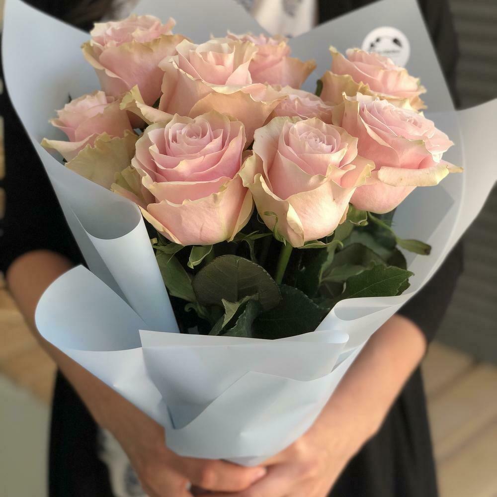 9 нежных роз Эквадор
