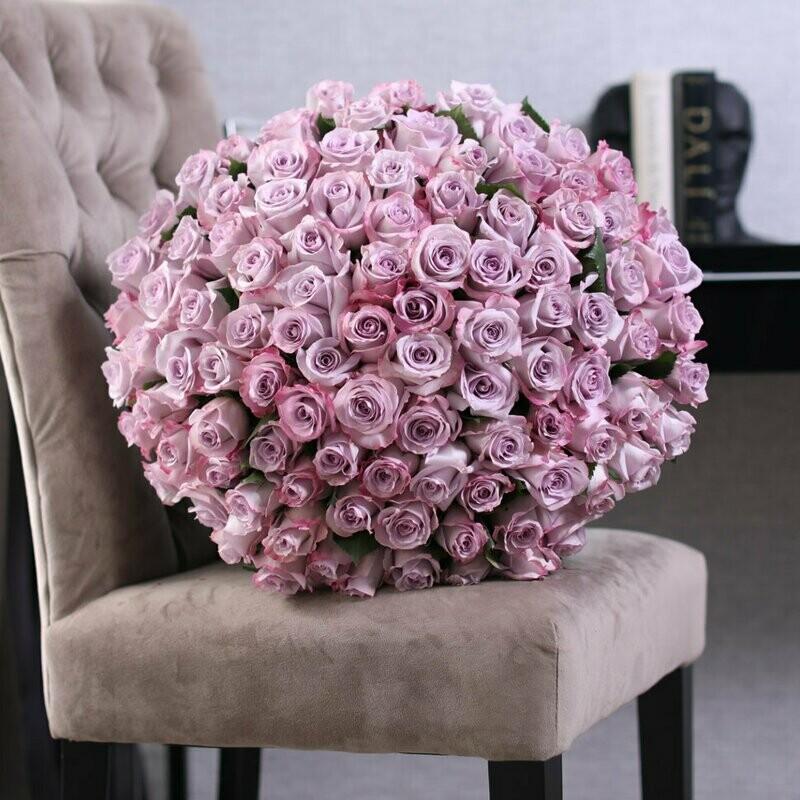 101 фиолетовая роза Эквадор