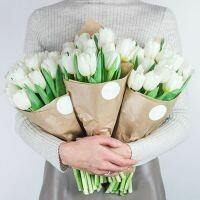 13 белых тюльпанов