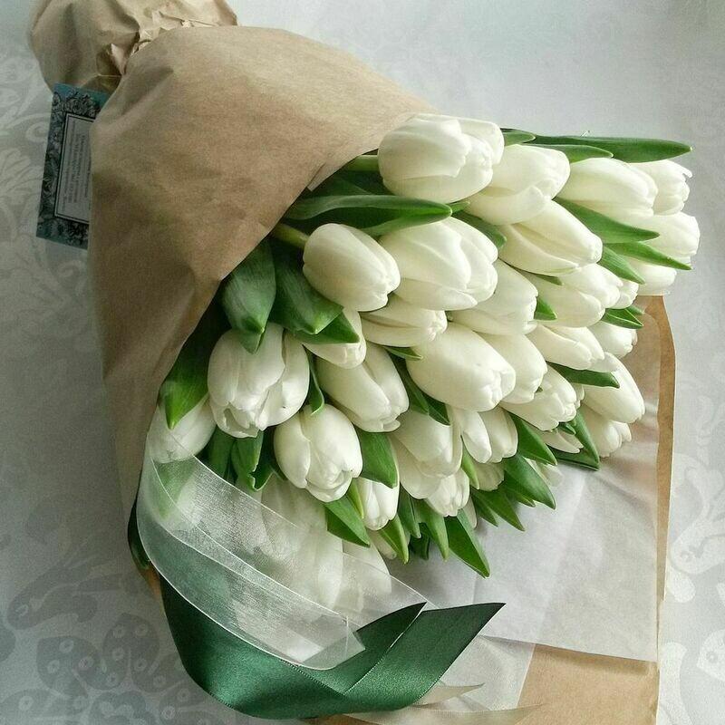 41 белый тюльпан