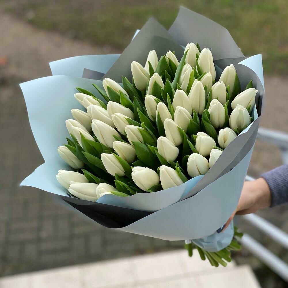 45 белых тюльпанов