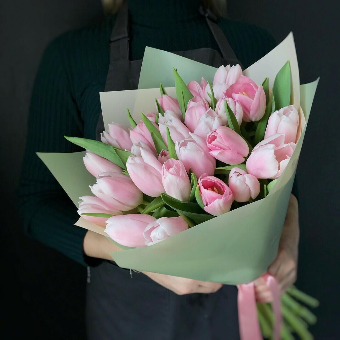 21 нежный тюльпан