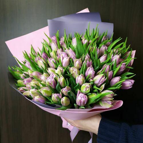 101 сиреневый тюльпан