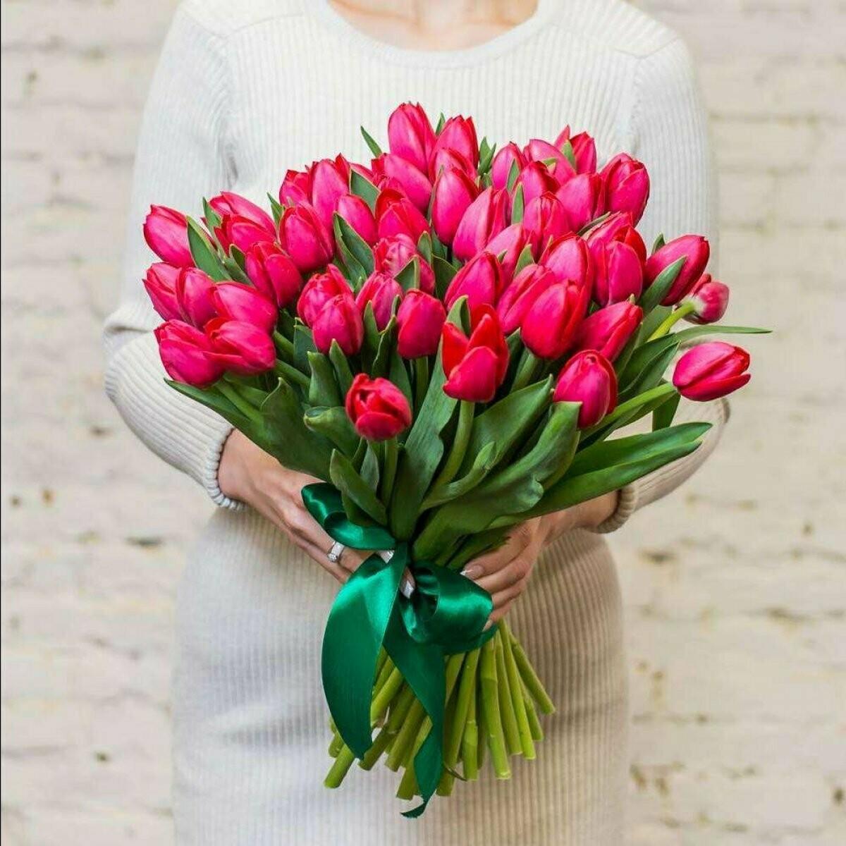 49 малиновых тюльпанов