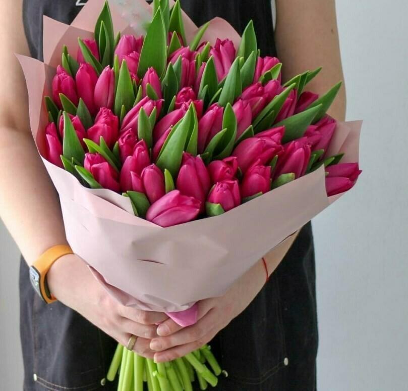 45 малиновых тюльпанов