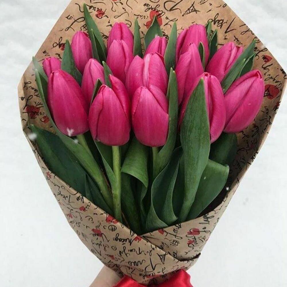 15 малиновых тюльпанов