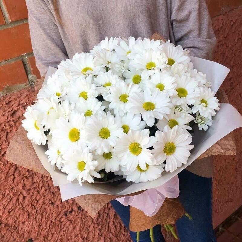 7 белых хризантем