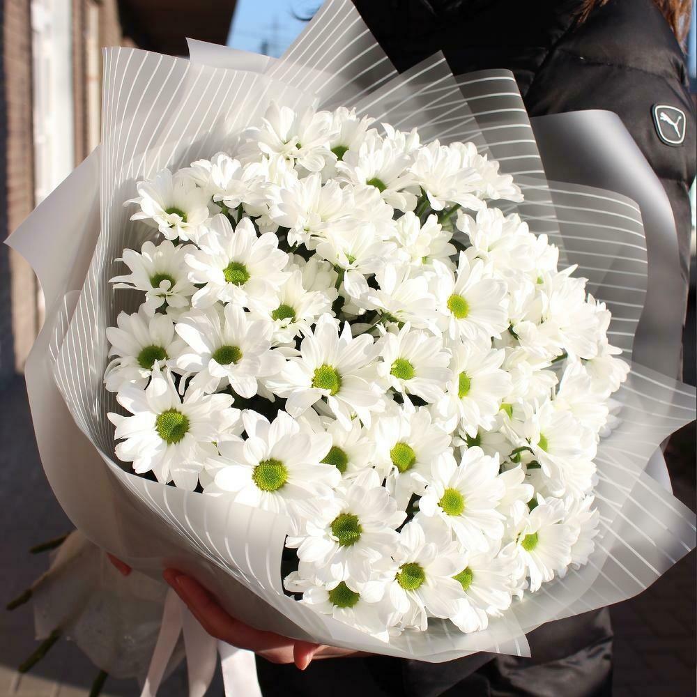 9 белых кустовых хризантем