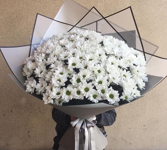 21 белая кустовая хризантема