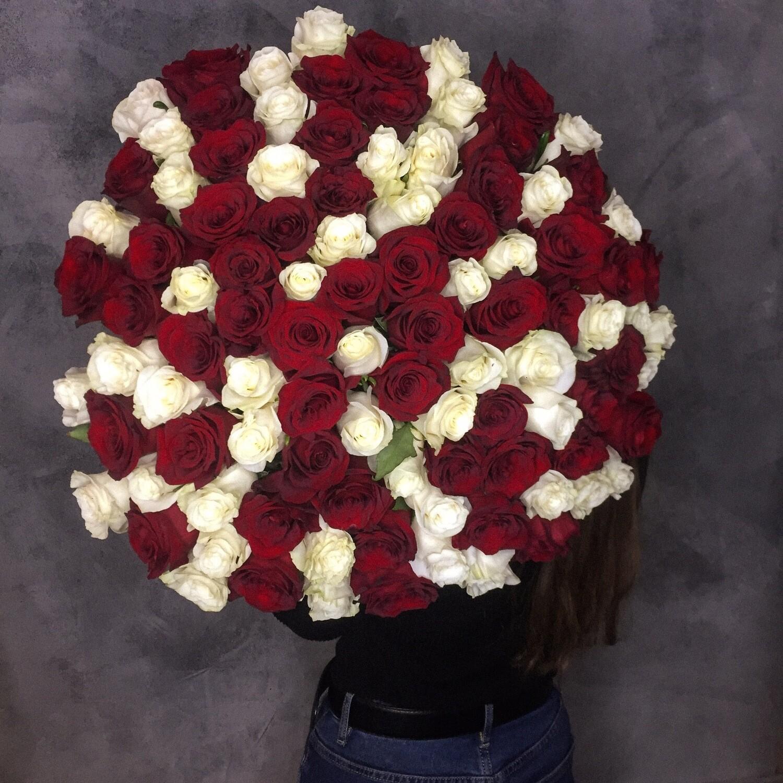 101 Роза Эквадор Микс