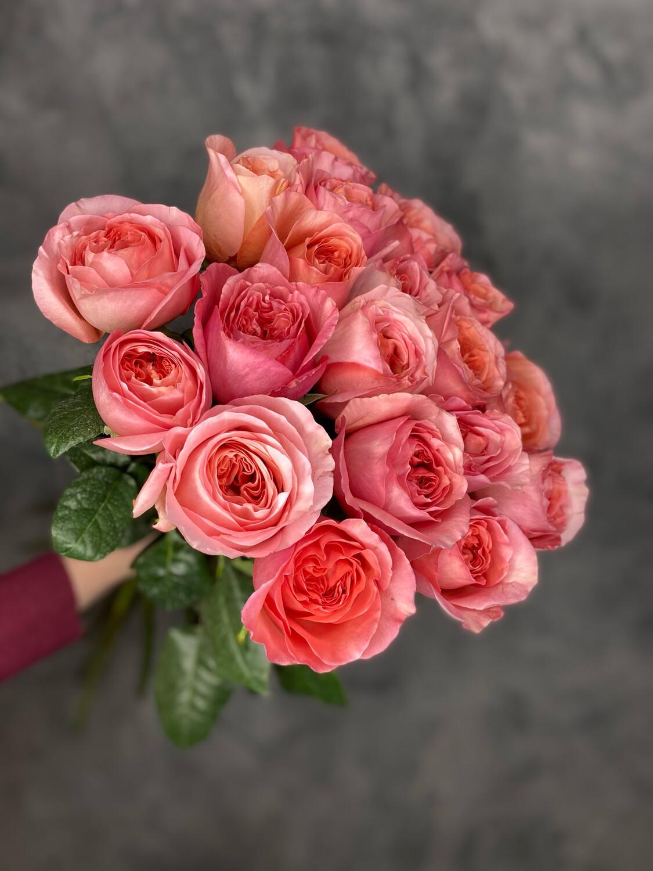Букет пионовидных роз 19 шт