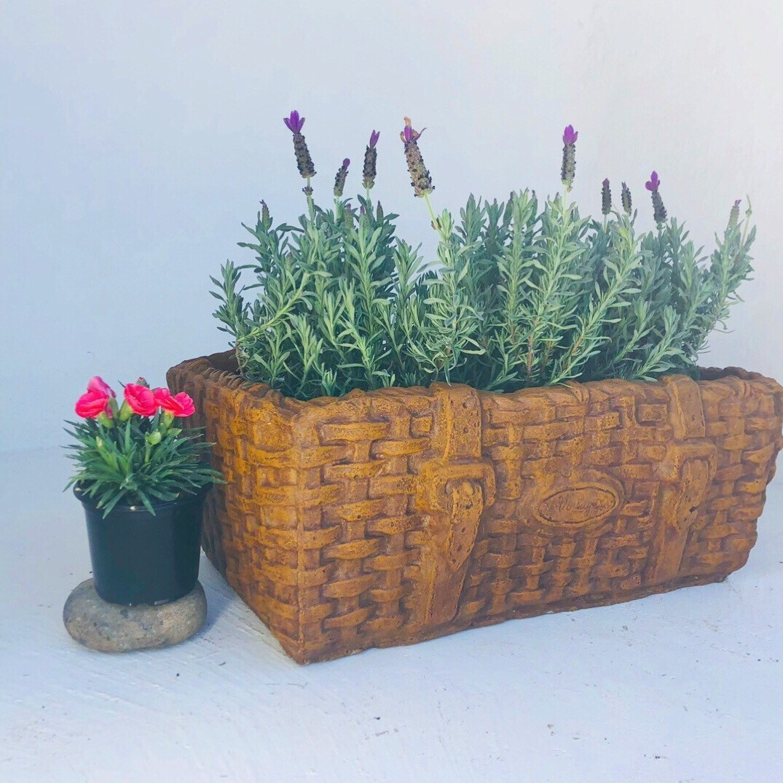 Picnic Basket Medium Honeyclay Finish - L490mm x W390mm x H160mm - 15kg