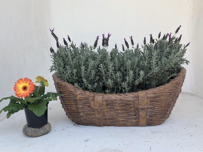 Woven Crib Planter Honeyclay Finish - L750mm x W480mm x H180mm - 19kg