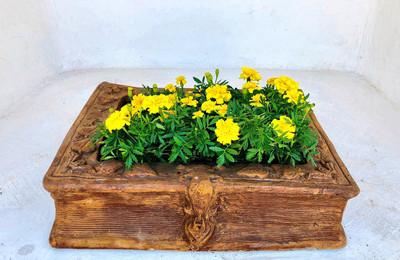 Lock Suitcase Planter Honeyclay Finish - L610mm x W570mm x H120mm - 20kg
