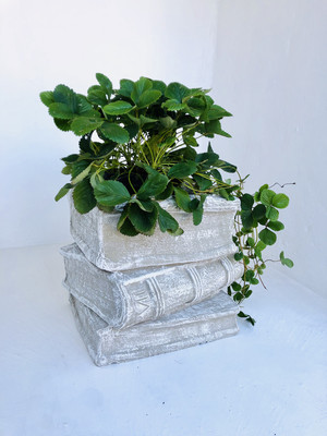 Three Book Planter Whitewash Finish - H450mm x W420mm -37kg