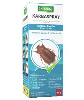 Efekto Karbaspray - 50g