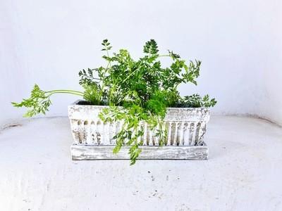 Window Pot Medium Whitewash With Drip Tray - L450mm x W150mm - 9kg