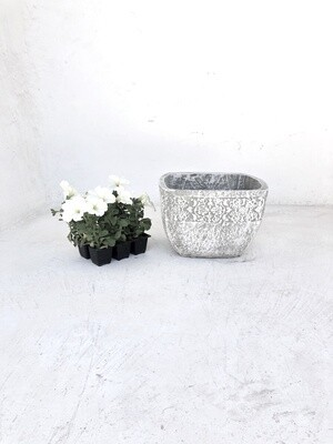 Anvick Pot Medium Whitewash Finish - H210mm x W310mm - 5kg