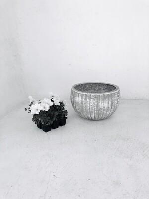 Hekla Pot Medium Whitewash Finish - H230mm x W370mm - 9kg