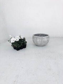 Hekla Pot Small Whitewash Finish - H180mm x W270mm - 5kg