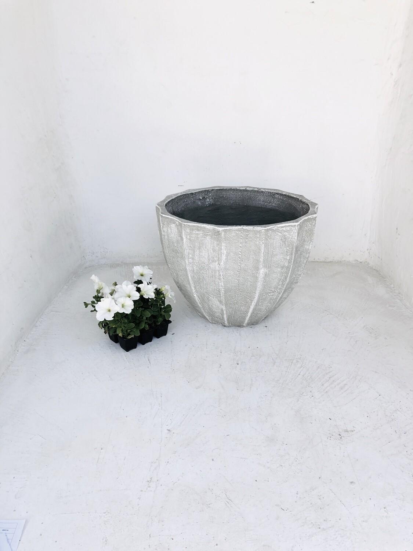 Godiva Pot Medium Whitewash Finish - H320mm x W430mm - 10kg