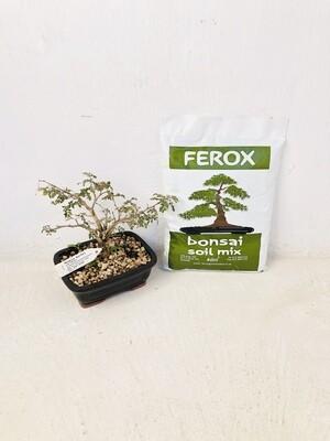Bonsai Organic Soil Mix 4dm3