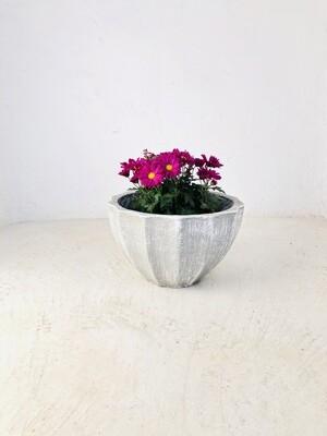 Godiva Pot Small Whitewash Finish - H220mm x W340mm - 6kg
