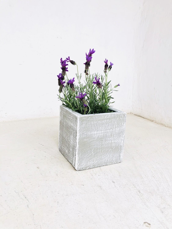Ondela Square Pot Small Whitewash Finish - H200mm x L200mm x W200mm - 6kg