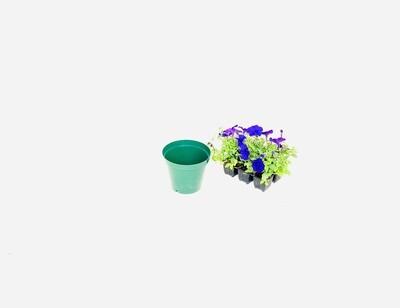 15cm Pot Green Width 15cm x Height 12,5cm
