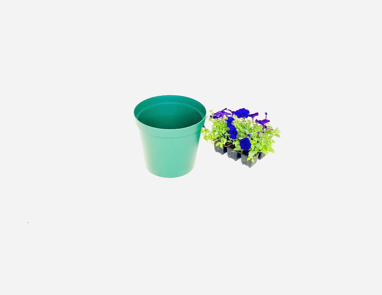 25cm Pot Green Width 25cm x Height 21.5cm