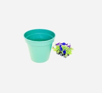 35cm Pot Green Width 35cm x Height 34cm