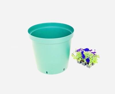 43cm Pot Green Width 43cm x Height 40cm