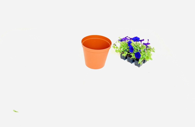 20cm Pot Terracotta Width 20cm x Height 17.5cm
