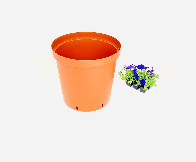 43cm Pot Terracotta Width 43cm x Height 40cm