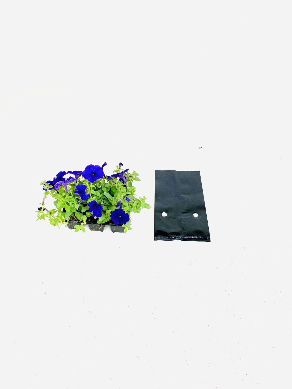 5 Liter Plastic Planting Growing Bags. 100 Micron.  R57 for 25 bags.  Diameter 175mm x Height 220mm Sold in packs of 25