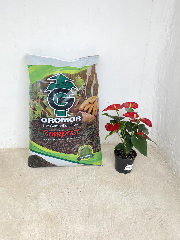Earth2Earth Compost  GROMOR 60 DM3 Large