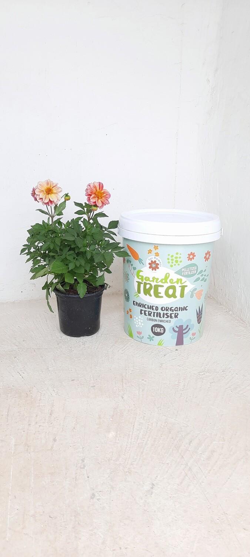 Avison Garden Treat for Flowers 10kg