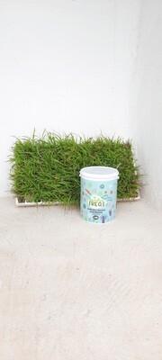 Avison Garden Treat for Grass 3.5kg