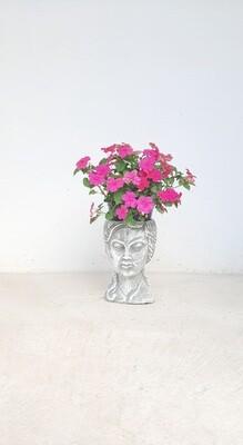 Lady Anna Planter Head - H250mm x W150mm - 5.8kg